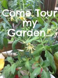 come tour my garden